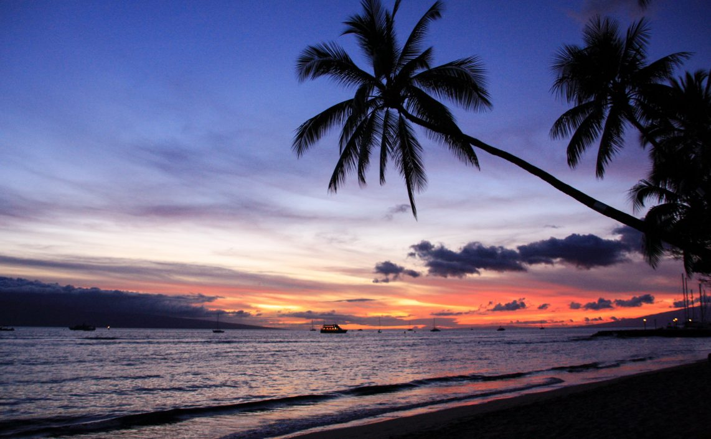 hawaii literatur